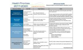 Marathon County Behavioral Health Initiatives (PDF)
